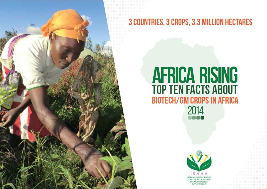 Africa Rising: Top Ten Facts About Biotech/GM Crops in Africa 2014
