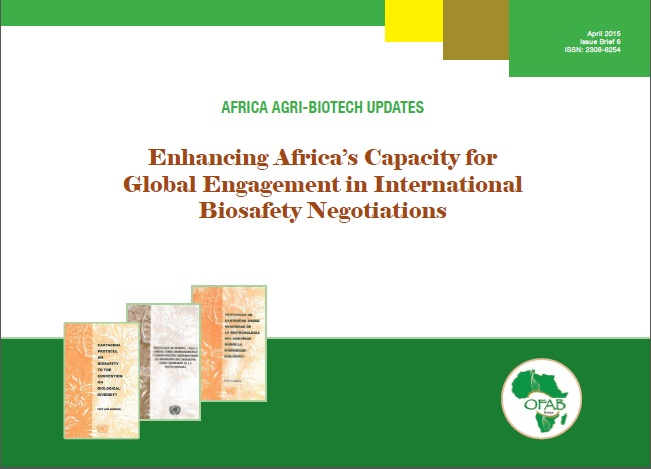 Enhancing Africa's Capacity for Global Engagement in International Biosafety Negotiations
