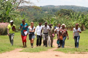 Uganda holds Banana Research Training for African Scientists and Biotechnology Regulators