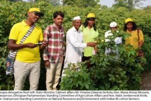 African Delegation Visists Indian Bt Cotton Farmers
