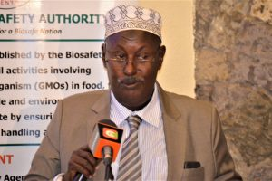 Kenyan Law-makers Demand for Homegrown GM Crops