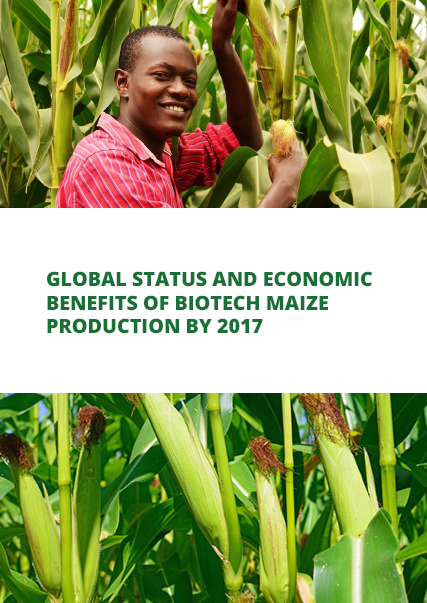 Global Status and Economic Benefits of Biotech Maize Production by 2017