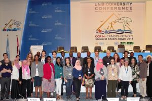 ISAAA's Statements at the UN Biodiversity Confrence