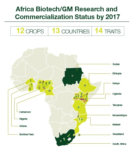 Africa Biotech Research Status by 2017
