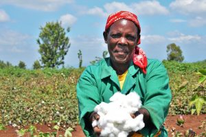 KENYA TO PLANT BT COTTON BY NOVEMBER 2020