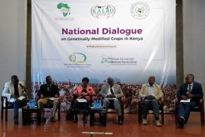 Kenyans Embrace Dialogue on Genetically Modified Crops