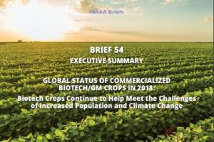 Special Report: Biotech Crops Continue to Help Meet the Challenges of Increased Population and Climate Change