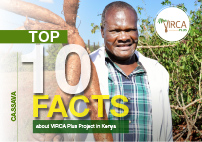 Top Ten Facts about VIRCA Plus Project in Kenya
