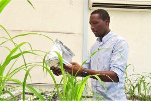 Kenya's top scientist awarded prestigious Royal Society Africa Prize 2020