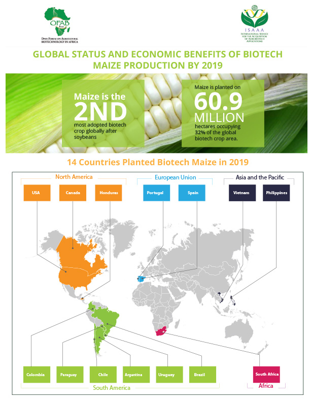 GLOBAL STATUS AND ECONOMIC BENEFITS OF BIOTECH MAIZE PRODUCTION BY 2019